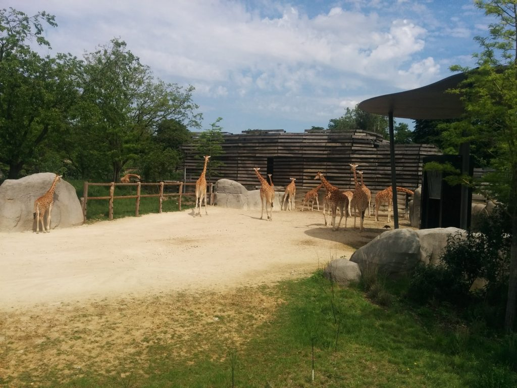 Zoo Paris