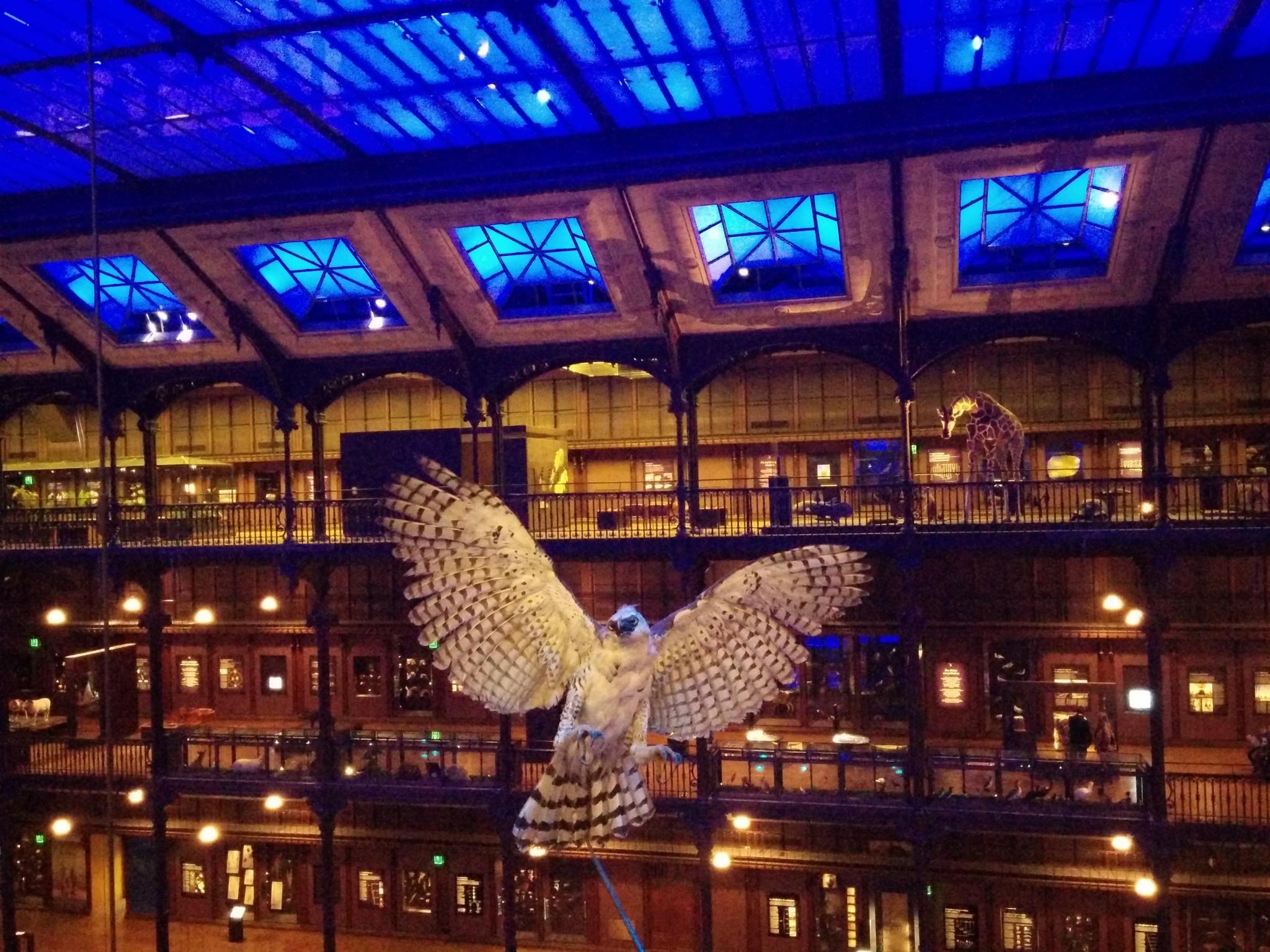 Grande Galerie de l'Evolution de Paris