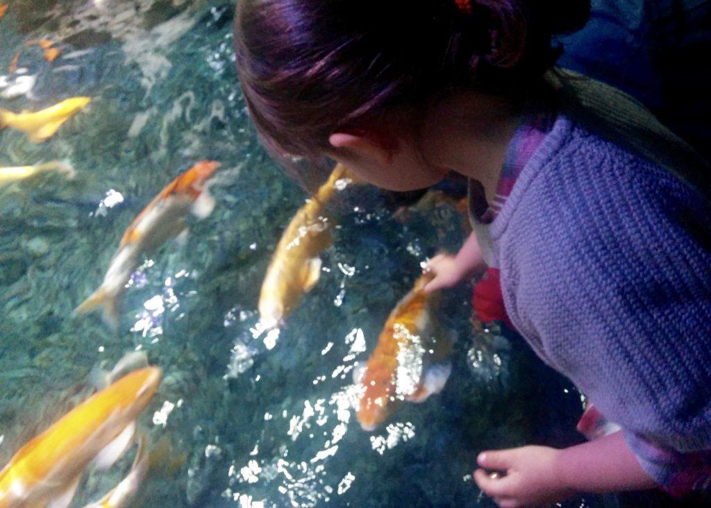 aquarios-de-paris-com-criancas